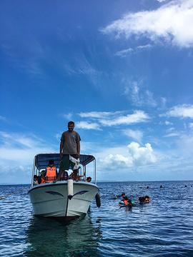 洛克群岛旅游图片