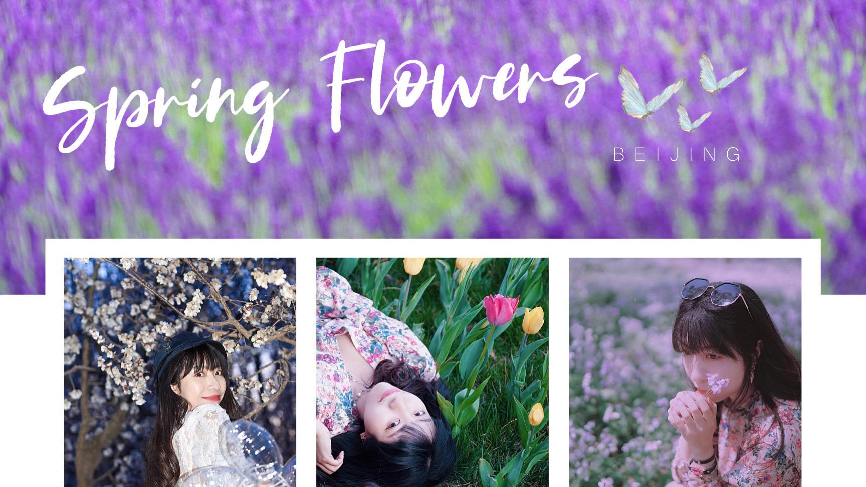 2021北京早春赏花秀,一场关于色彩的角逐即将上演(附人像写真拍摄指南)