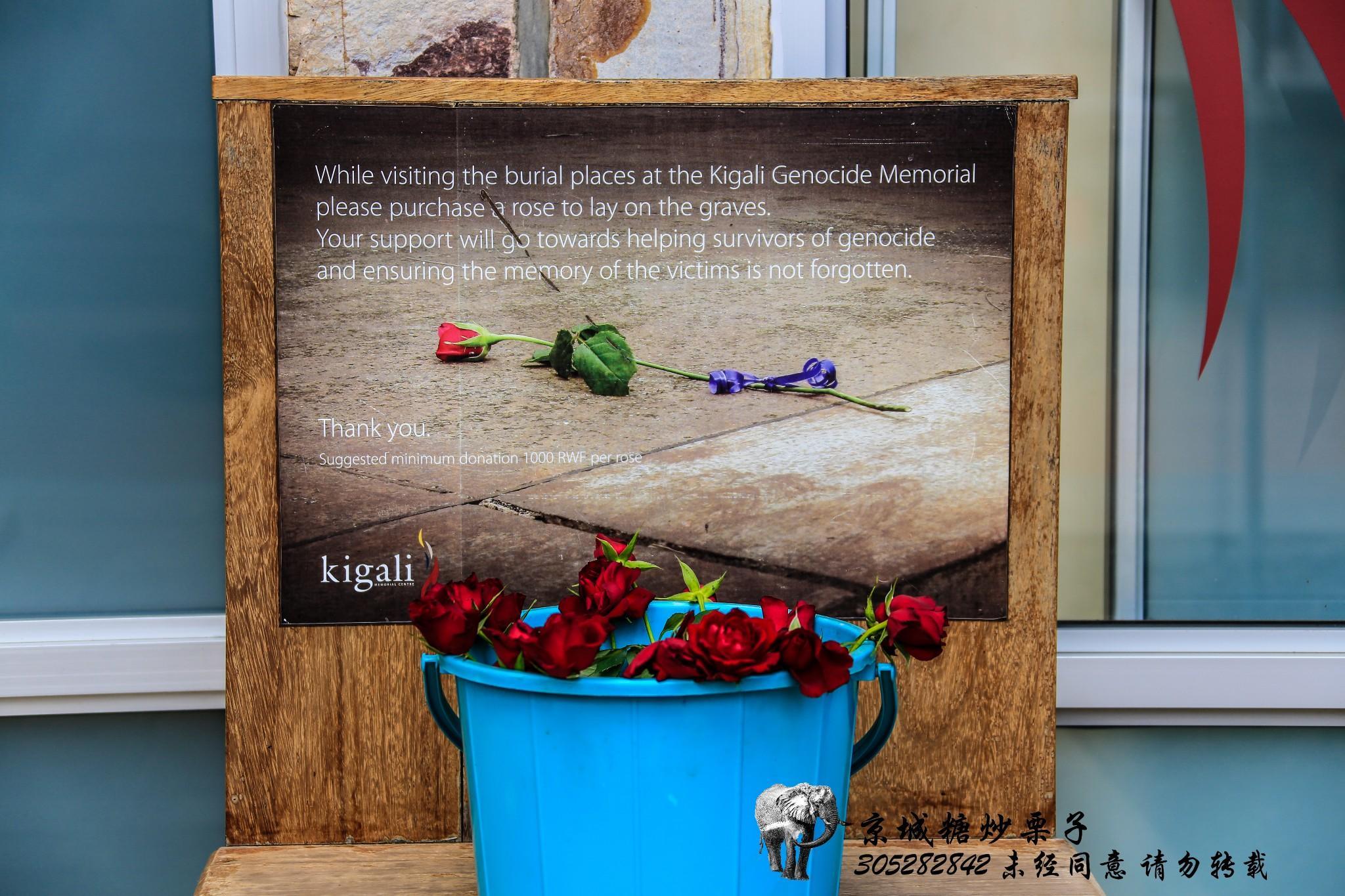 惨绝人寰的记忆,卢旺达