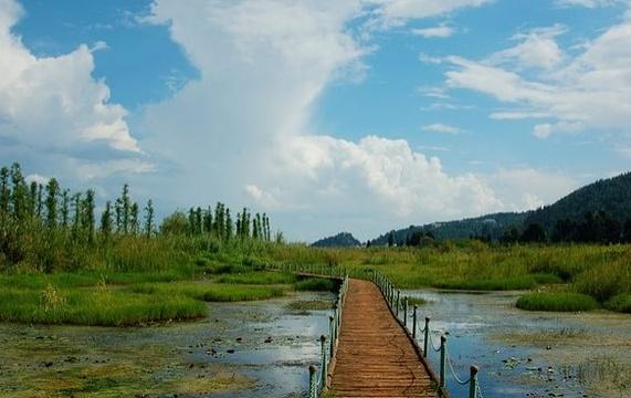 西华湿地公园旅游景点图片