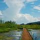 西华湿地公园