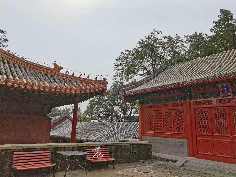 秋天北京是最美的,用两天时间完成一场等待已久的视觉盛宴