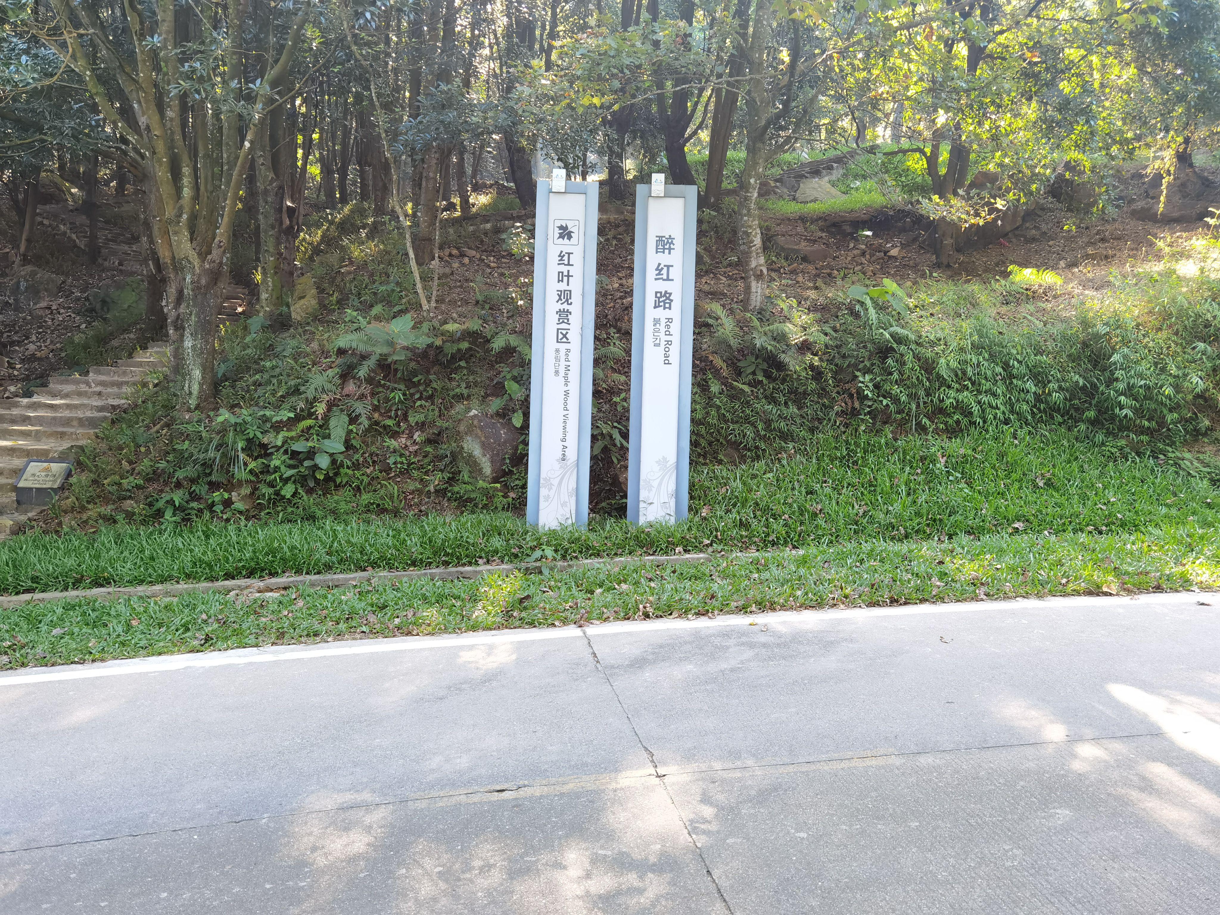 2日游广东惠州市龙门县南昆山国家森林公园,石门国家森林公园主峰天堂
