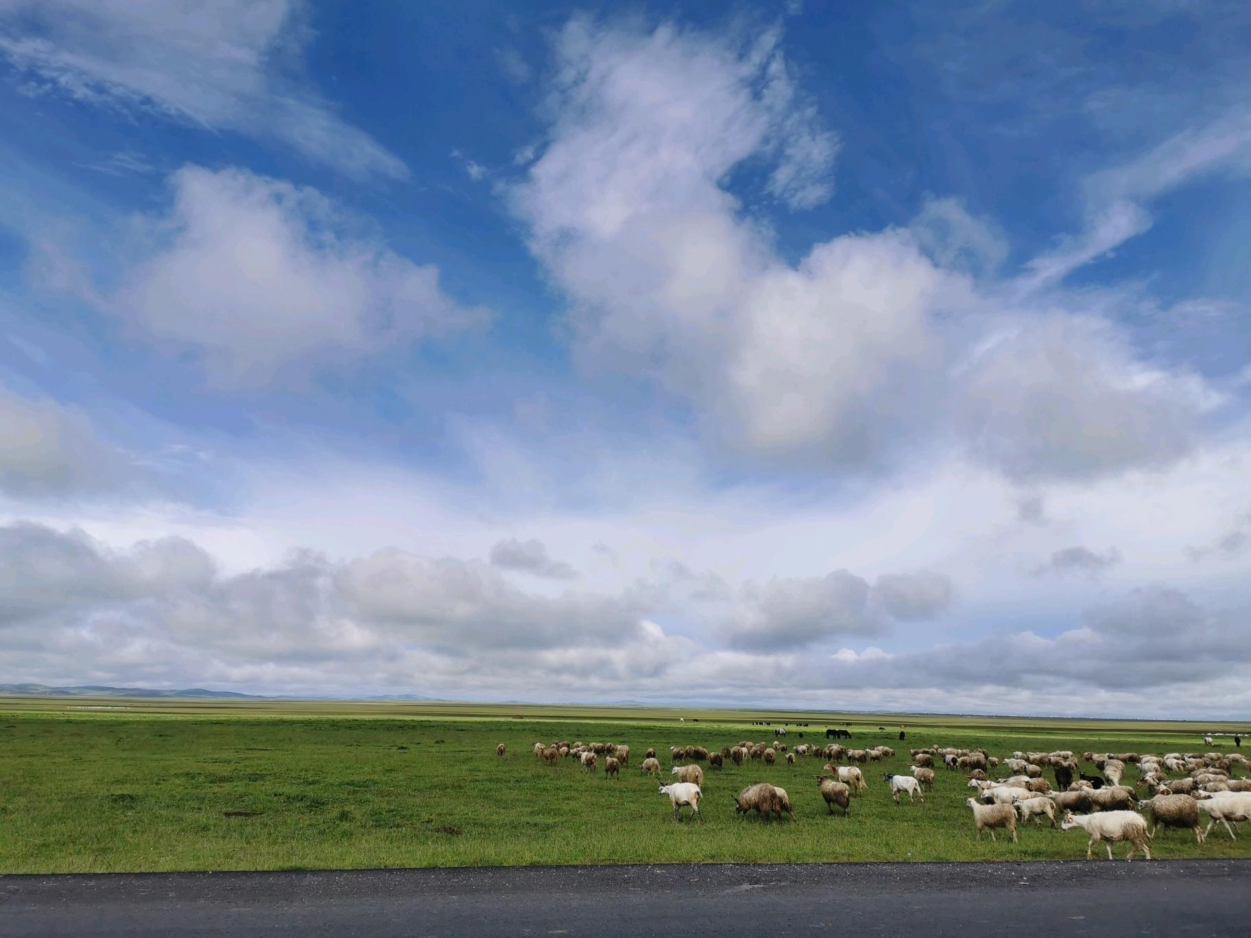 踏足三省,脚跨两河的川北甘南草原快意驰骋之旅