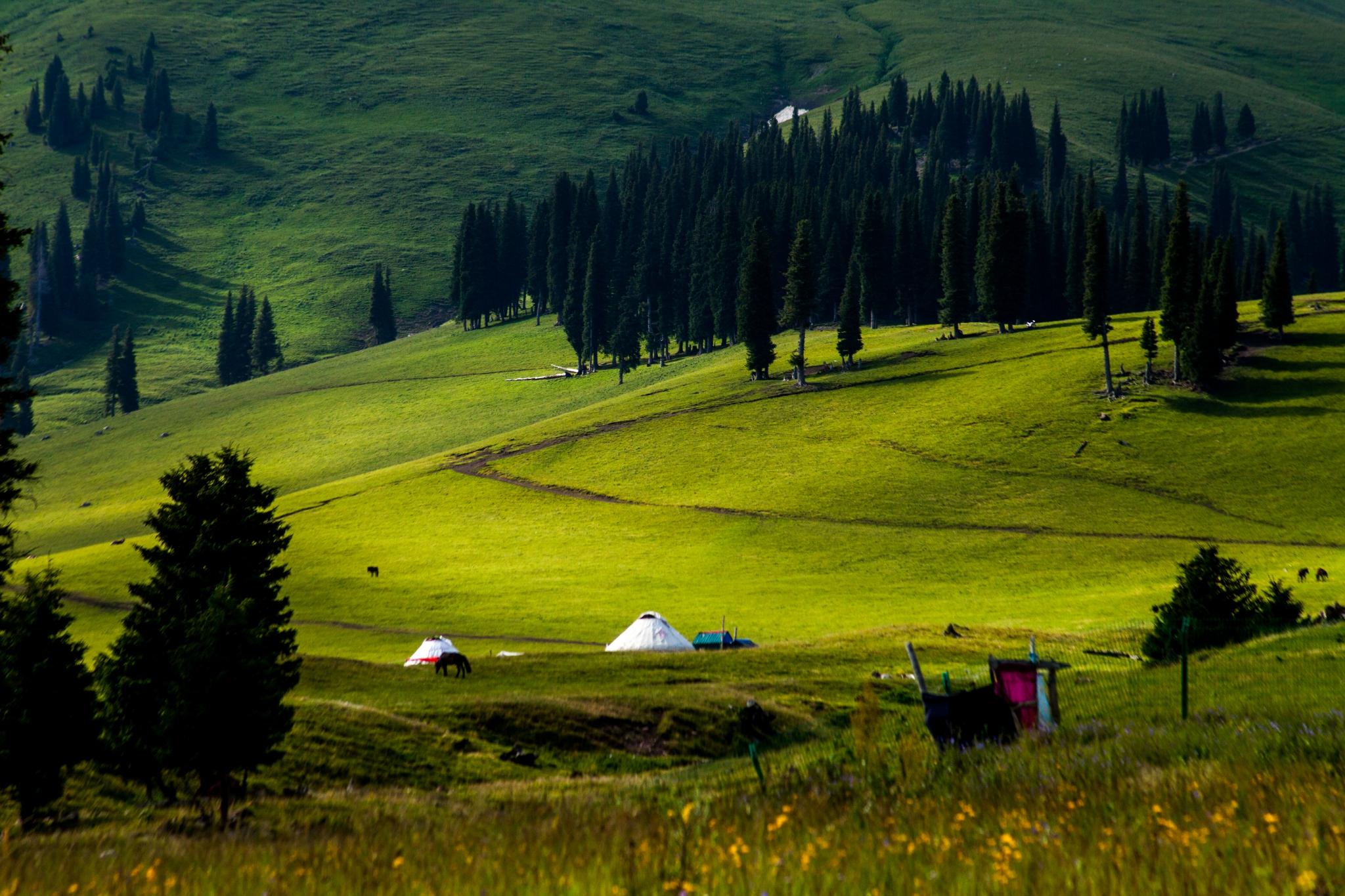 大美新疆青海,欢乐行行摄摄