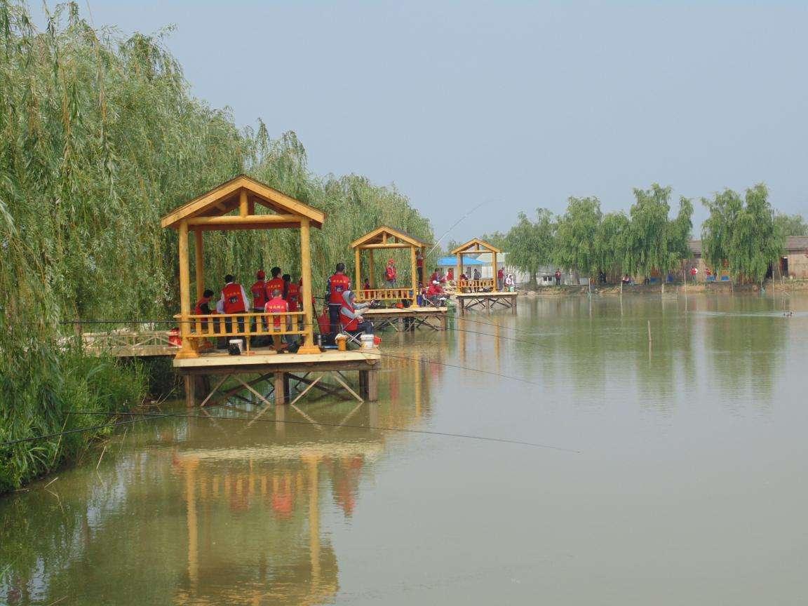 夏日美景之高邮湖芦苇荡湿地公园,追寻那份惬意和恬静