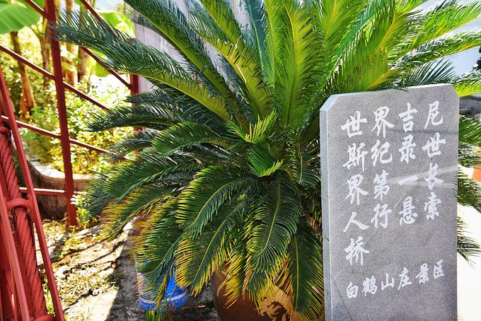白鹤山庄图片