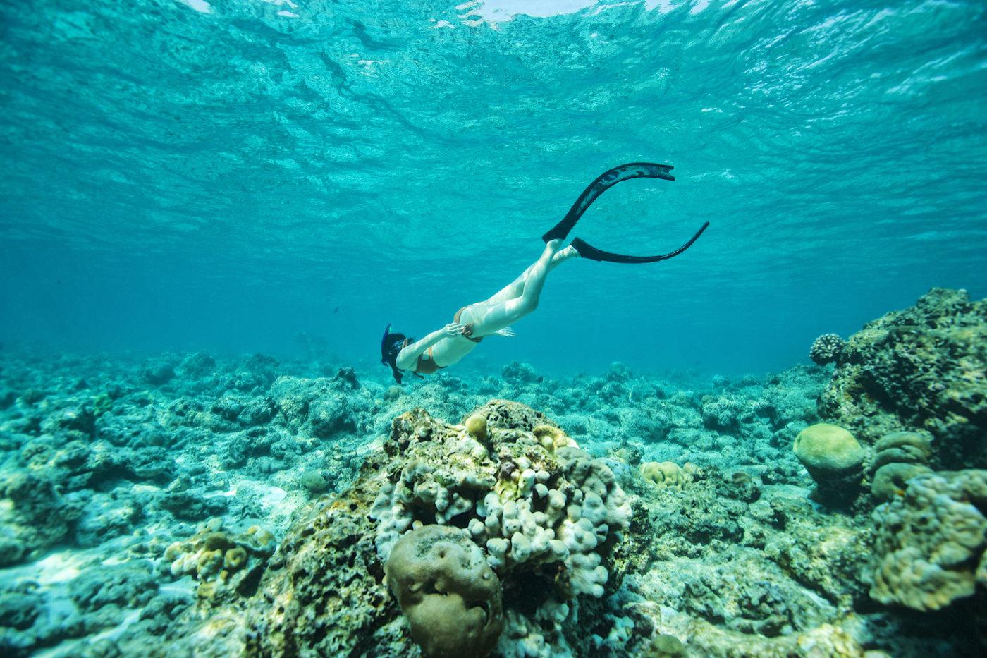 没去过马尔代夫Soneva的度假村,怎么敢说真正享受过海岛游?