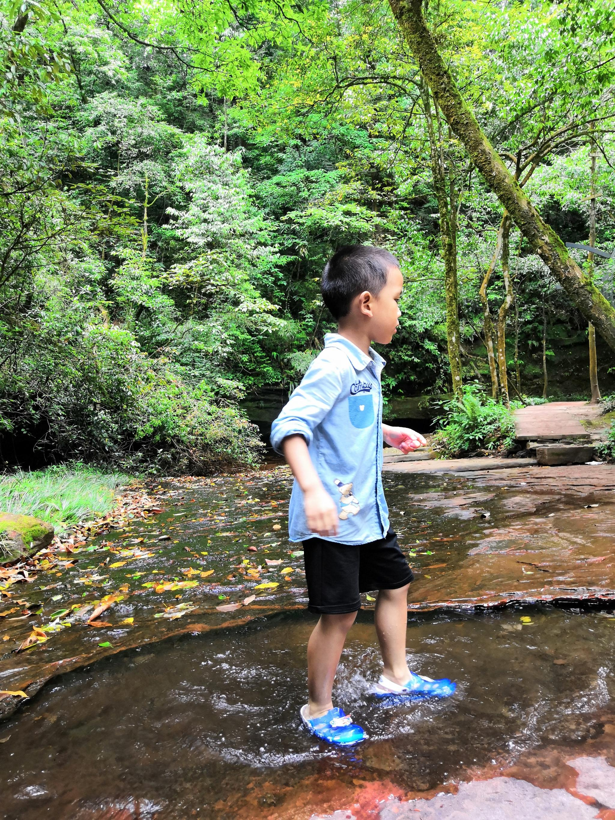 成都周边,避暑,玩水,采摘,带娃好去处,强烈推荐--天台山