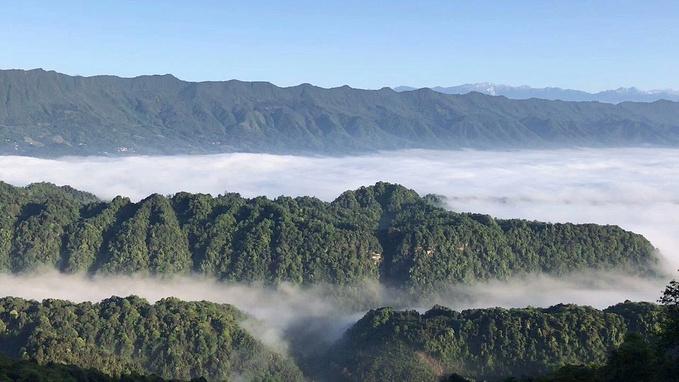 雅安蒙顶山景区图片