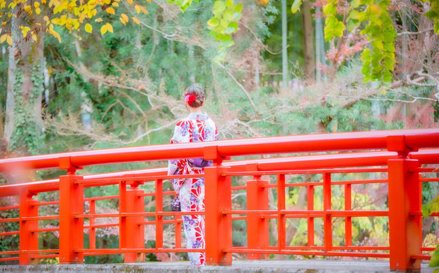带上周游券来静冈、富士山吧,满足你所有对于日本的想象