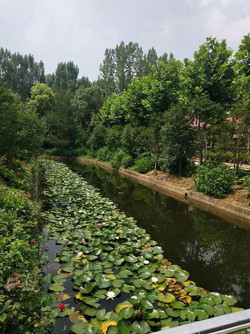 武汉江夏攻略农庄户外烧烤团建活动一日游-武无双三国完美和平图片