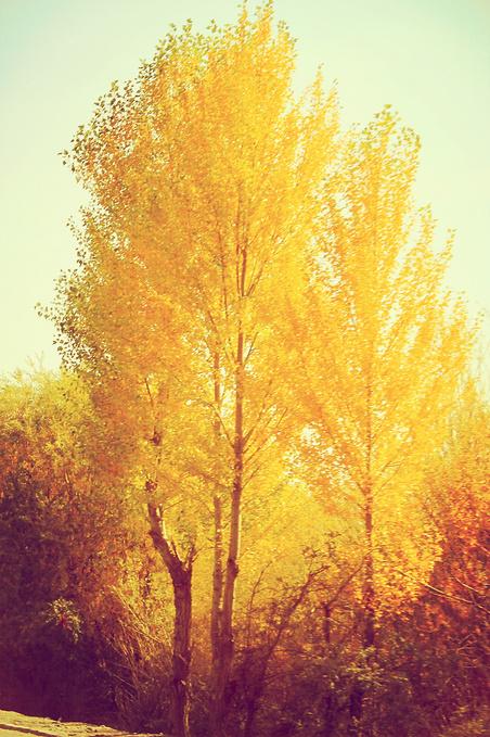 奥依塔克风景区图片