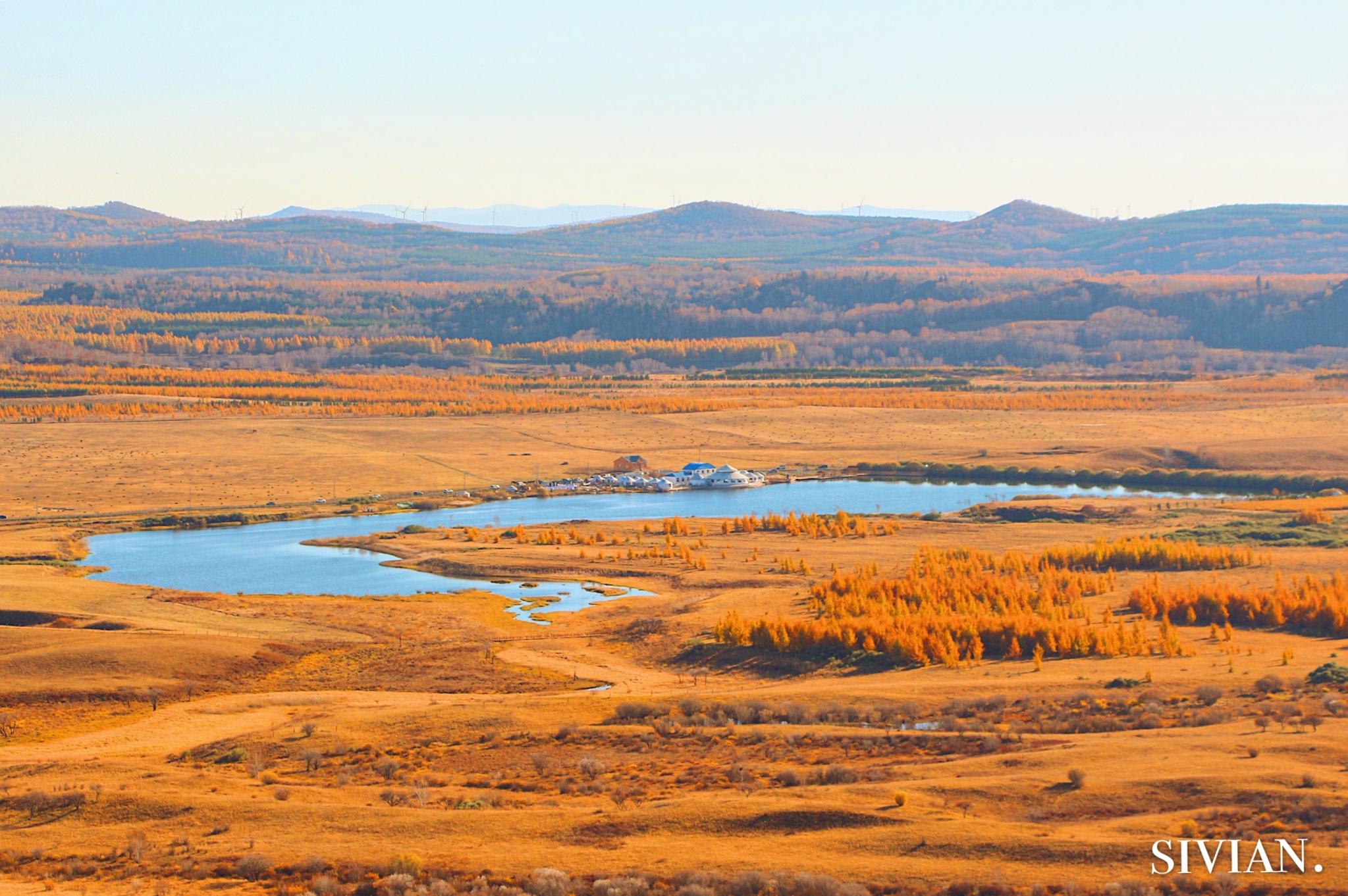 北上直击塞罕坝与乌兰布统,来看秋天的尾巴