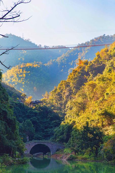 一日航线 ·二  《古越之地,水城绍兴》一日航线:香榧森林公园,米果果