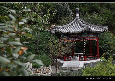 千灵山公园的图片
