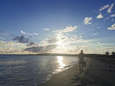 Vieques Island旅游景点图片