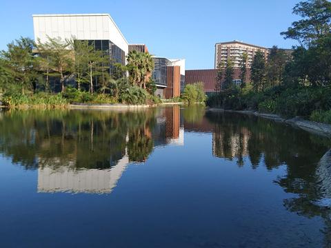 香湖公园的图片