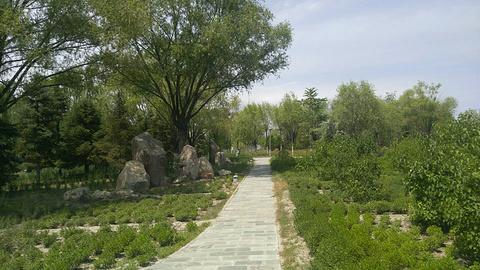 新区人民公园