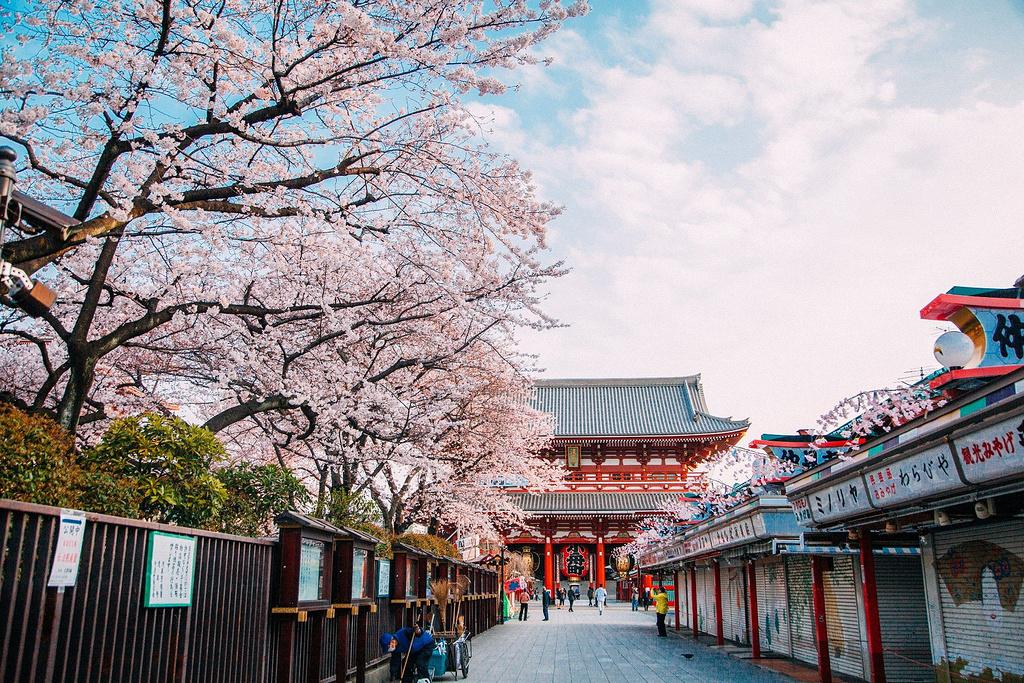 东京+九州经典8日线路