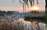 妫河森林公园