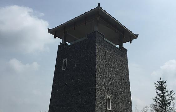 陈蕴瑜将军故居旅游景点图片