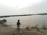 黄河口湿地博物馆
