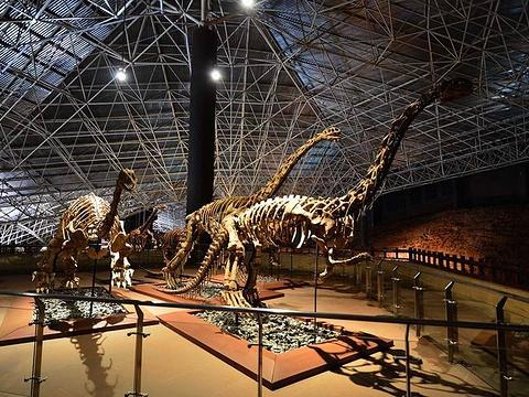 世界恐龙谷旅游景点图片