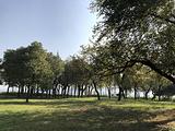 杨梅洲水上公园