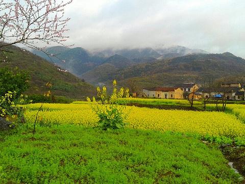 青山旅游景点图片