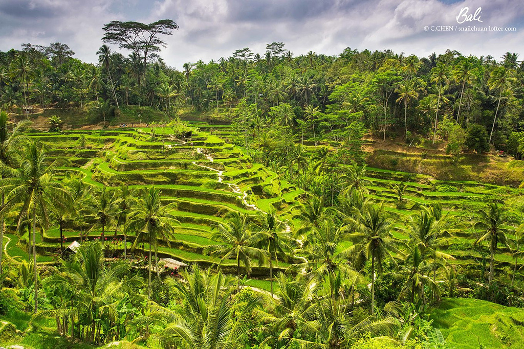 巴厘岛网红2日,你能想象的浪漫这里都能给你