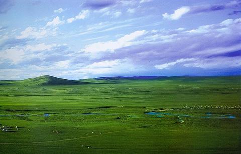 白音锡勒牧场景区