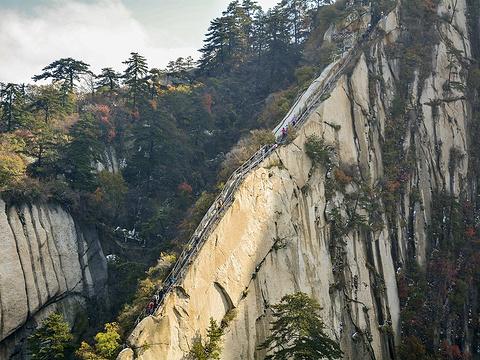 苍龙岭旅游景点图片