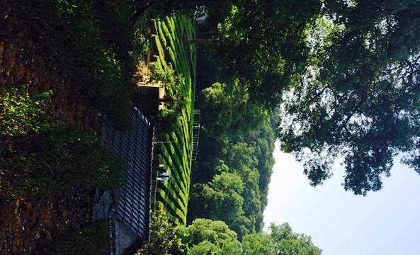 鸡笼山旅游景点图片