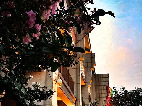 绮园文化市民广场旅游景点图片