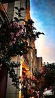 绮园文化市民广场