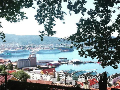 Gamle Bergen旅游景点图片