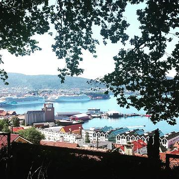 Gamle Bergen的图片