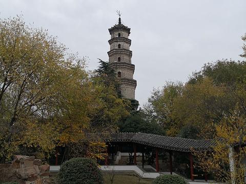 文峰公园旅游景点图片