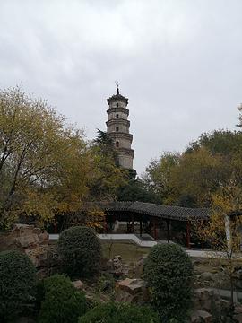 文峰公园的图片