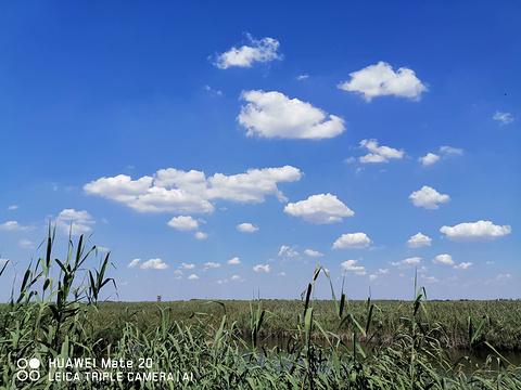 麻大湖国家湿地公园旅游景点图片