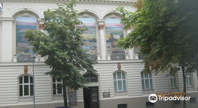 Tivadar Csontvary Museum旅游景点图片