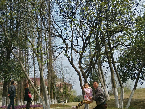 婚庆公园旅游景点图片