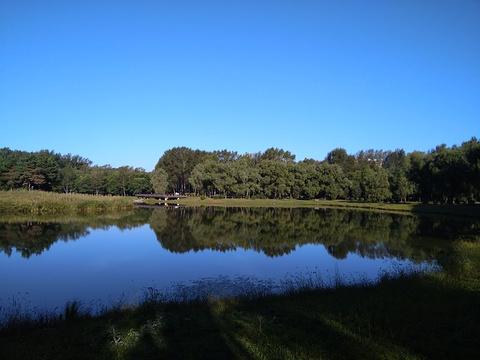 铁力公园的图片