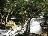 水上森林-小卖部
