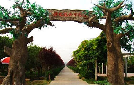 苏北花卉示范园旅游景点图片