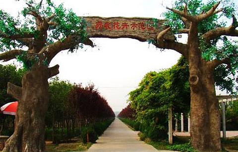 苏北花卉示范园