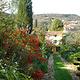 法兰西堡别墅花园