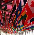 北京奥运博物馆