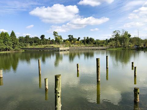 青龙湖旅游景点图片